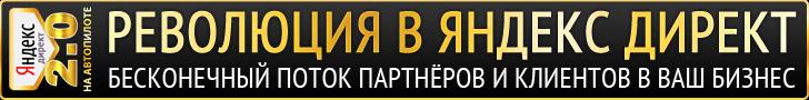 Яндекс Директ на Автопилоте 2.0