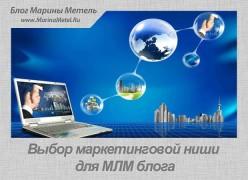Выбор Маркетинговой Ниши Для МЛМ Блога